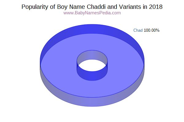 Variant Popularity Chart  for Chaddi  in 2018