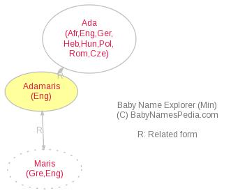 Baby Name Explorer for Adamaris