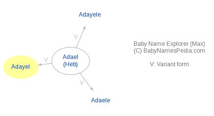 Baby Name Explorer for Adayel