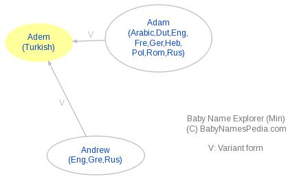 Baby Name Explorer for Adem