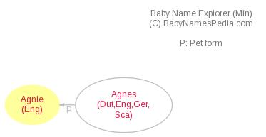 Baby Name Explorer for Agnie