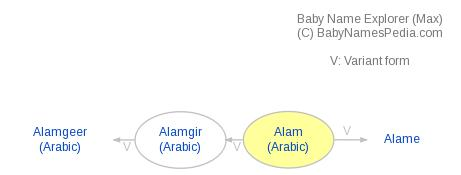 Baby Name Explorer for Alam