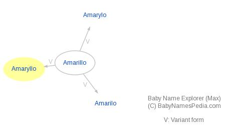 Baby Name Explorer for Amaryllo