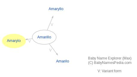 Baby Name Explorer for Amarylo