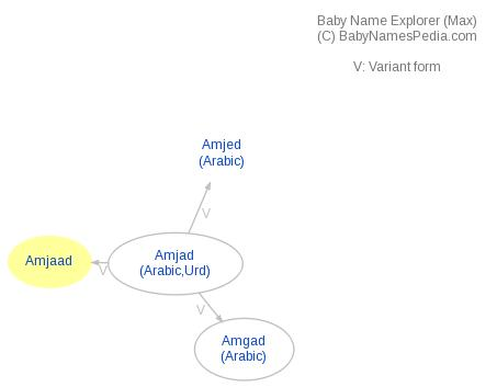 Baby Name Explorer for Amjaad