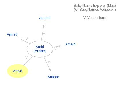 Baby Name Explorer for Amyd