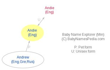 Baby Name Explorer for Andie
