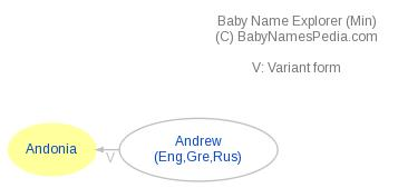 Baby Name Explorer for Andonia