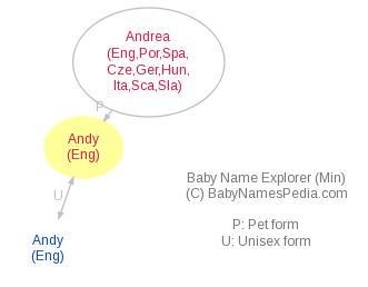 Baby Name Explorer for Andy