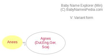 Baby Name Explorer for Anees