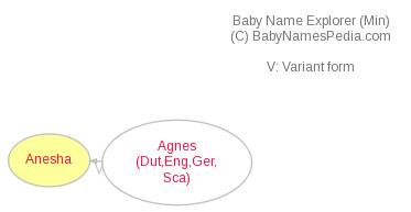 Baby Name Explorer for Anesha