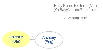 Baby Name Explorer for Antonije