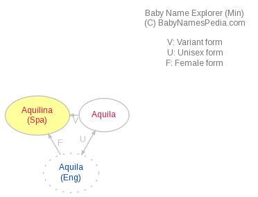 Baby Name Explorer for Aquilina