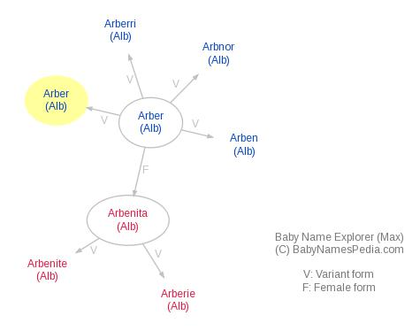 Baby Name Explorer for Arbër