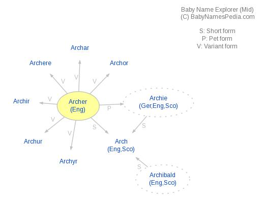 Baby Name Explorer for Archer