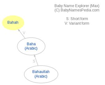 Baby Name Explorer for Bahah