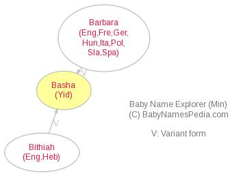 Baby Name Explorer for Basha