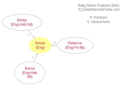 Baby Name Explorer for Becka