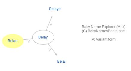 Baby Name Explorer for Belae