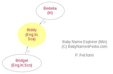 Baby Name Explorer for Biddy