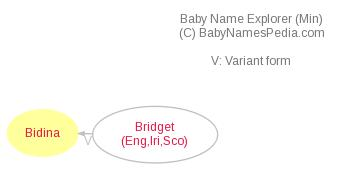 Baby Name Explorer for Bidina