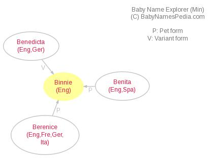 Baby Name Explorer for Binnie