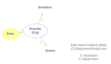 Baby Name Explorer for Brew