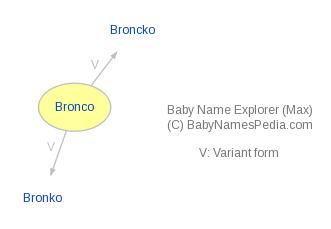 Baby Name Explorer for Bronco