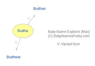 Baby Name Explorer for Budha