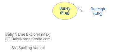 Baby Name Explorer for Burley