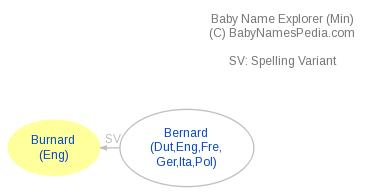 Baby Name Explorer for Burnard