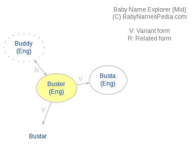 Baby Name Explorer for Buster