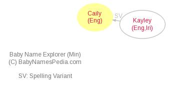 Baby Name Explorer for Caily