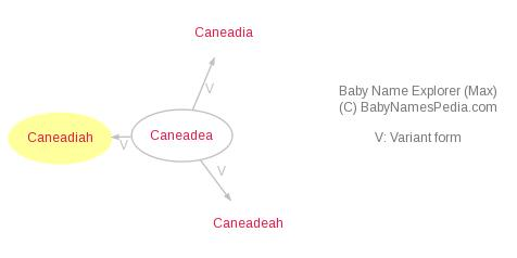 Baby Name Explorer for Caneadiah