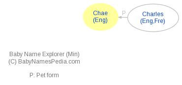 Baby Name Explorer for Chae