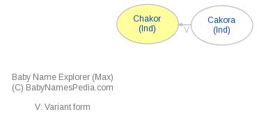 Baby Name Explorer for Chakor