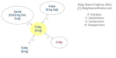 Baby Name Explorer for Coby