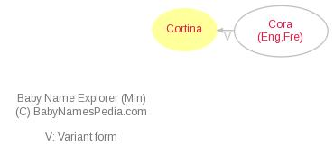 Baby Name Explorer for Cortina