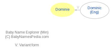 Baby Name Explorer for Dominie