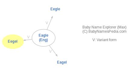 Baby Name Explorer for Eegel