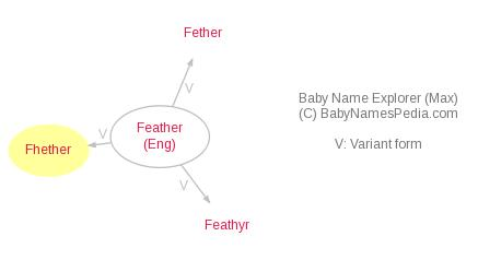 Baby Name Explorer for Fhether