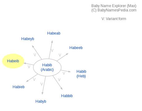 Baby Name Explorer for Habeib