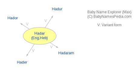 Baby Name Explorer for Hadar
