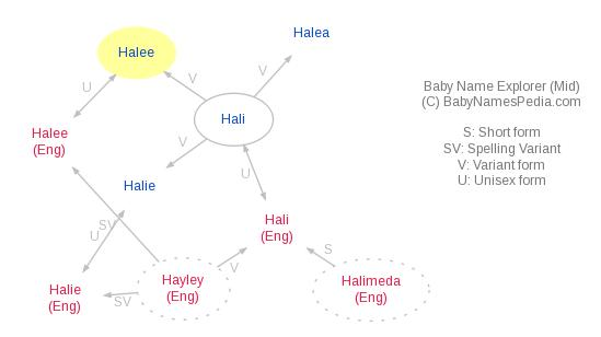 Baby Name Explorer for Halee