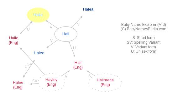 Baby Name Explorer for Halie
