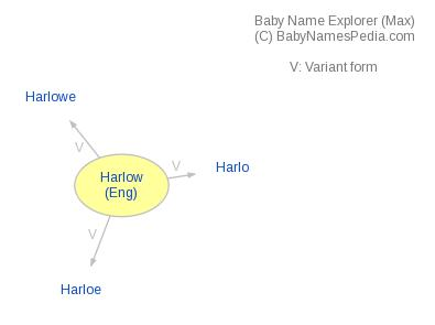 Baby Name Explorer for Harlow