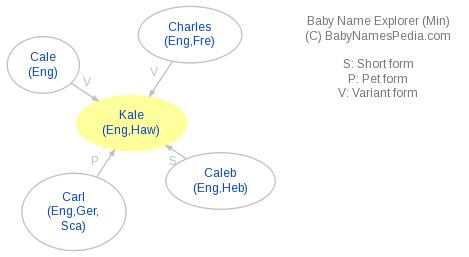 Baby Name Explorer for Kale