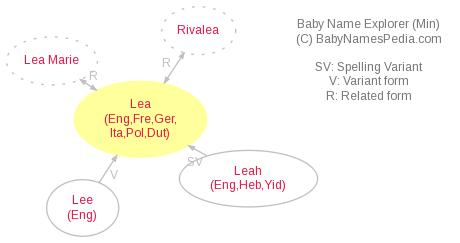 Baby Name Explorer for Lea