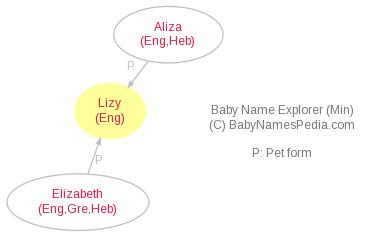Baby Name Explorer for Lizy