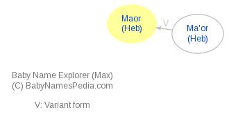 Baby Name Explorer for Maor